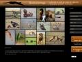 Biodiversimage par jean-Pierre Blanchet